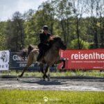 Islandpferde Frankenhöhe auf der BIM 2019 in Hammersdorf