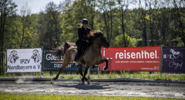 Islandpferde-Frankenhoehe-BIM-2019-tierfoto-cm